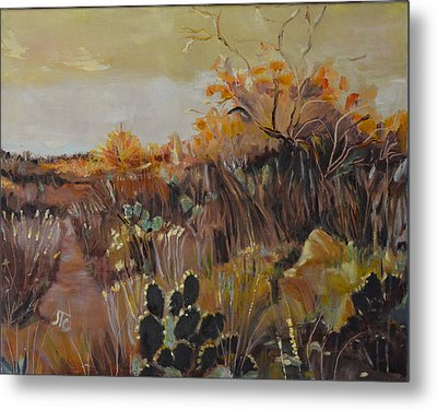 Desert Landscape Metal Print by Julie Todd-Cundiff