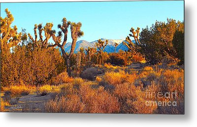 Desert Mountain Metal Print by Gem S Visionary