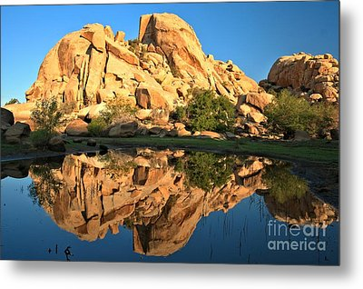 Desert Oasis Reflections Metal Print by Adam Jewell