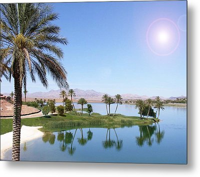 Desert Oasis Metal Print by Stephen Flint