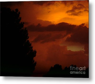 Metal Print featuring the photograph Desert Storm by Carla Carson