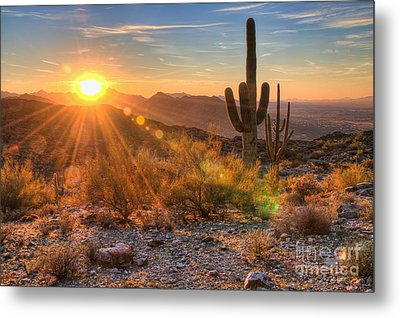 Desert Sunset II Metal Print