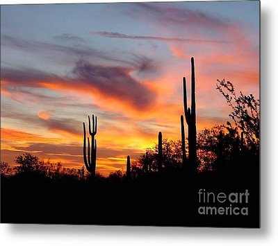 Desert Sunset Metal Print by Joseph Baril