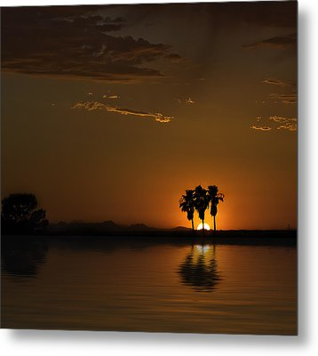 Metal Print featuring the photograph Desert Sunset by Lynn Geoffroy
