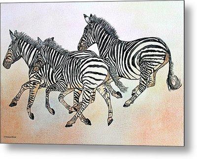 Desert Zebras Metal Print by Janet Immordino