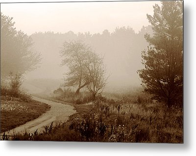 Desolation  Metal Print