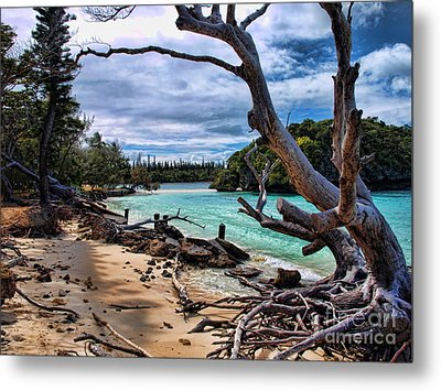 Metal Print featuring the photograph Destruction by Trena Mara