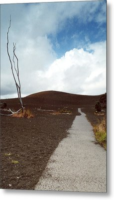 Metal Print featuring the photograph Devastation Trail by Mary Bedy