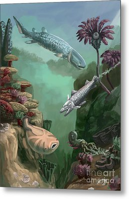 Devonian Period Metal Print by Spencer Sutton