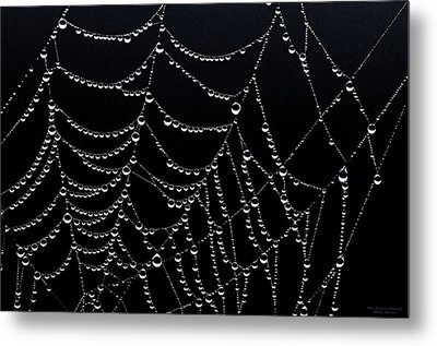 Dew Drops On Web 2 Metal Print by Marty Saccone