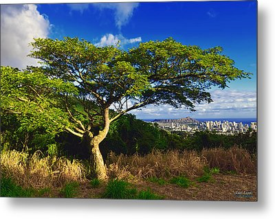 Metal Print featuring the photograph Diamond Head From Tantalus Drive by Aloha Art