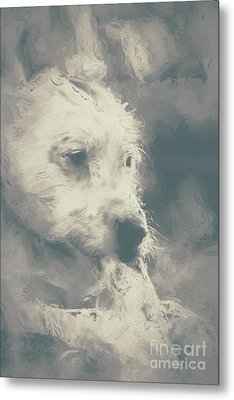 Digital Oil Painting Of A Cute Scruffy Dog  Metal Print by Jorgo Photography - Wall Art Gallery