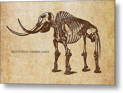 Dinosaur Mastodon Americanus Metal Print by Aged Pixel