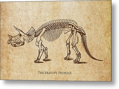 Dinosaur Triceratops Prorsus Metal Print by Aged Pixel