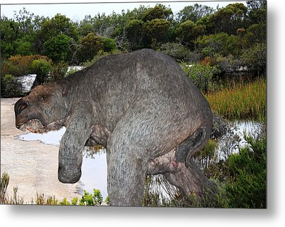 Metal Print featuring the photograph Diprotodon by Miroslava Jurcik