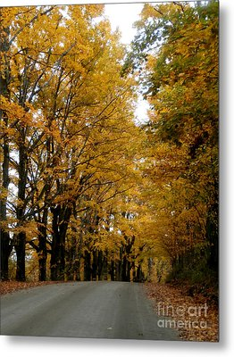 Dirt Road Colors Metal Print by Steven Valkenberg