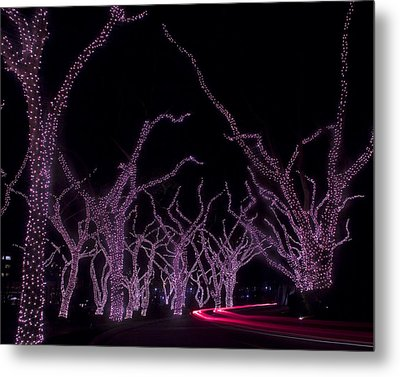 Metal Print featuring the photograph Disco Trees by Jim Snyder