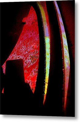 Discover Metal Print by Shirley Sirois