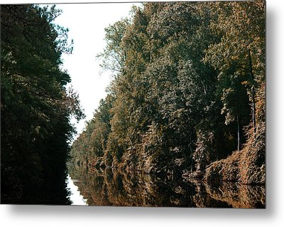 Dismal Swamp Canal Metal Print by Rebecca Davis