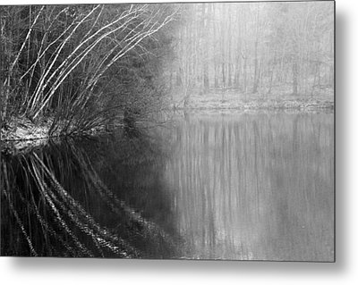 Divided By Nature Bw Metal Print by Karol Livote