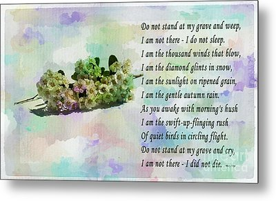 Do Not Stand At My Grave And Weep Metal Print by Barbara Griffin