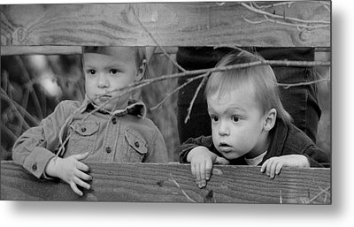 Do You See It Metal Print by Barbara Dudley
