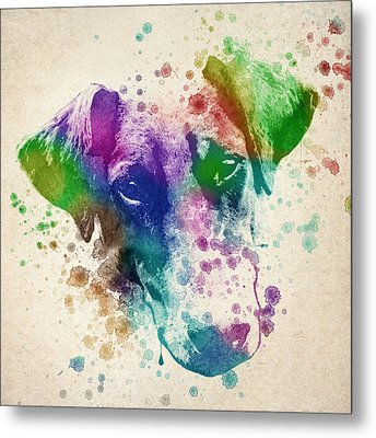 Doberman Splash Metal Print by Aged Pixel
