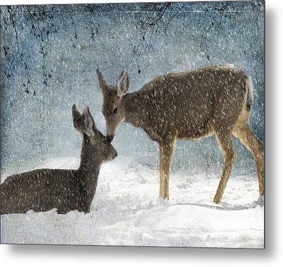 Doe A Deer Metal Print by Juli Scalzi