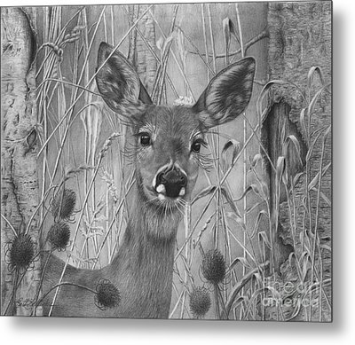 Doe Pretty Metal Print