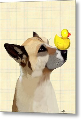 Dog And Duck Metal Print by Kelly McLaughlan