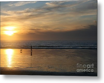 Dog And Man On The Beach Metal Print