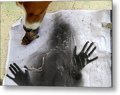Dog Art Metal Print
