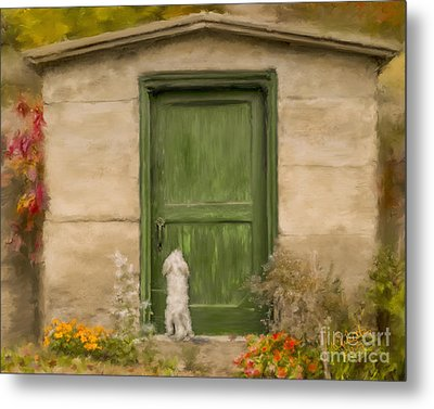 Dog At The Door Metal Print by Andrea Auletta