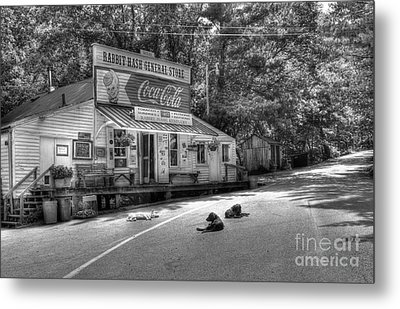 Dog Day Afternoon Bw Metal Print by Mel Steinhauer