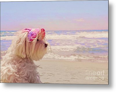 Dog Days Of Summer Metal Print by Andrea Auletta