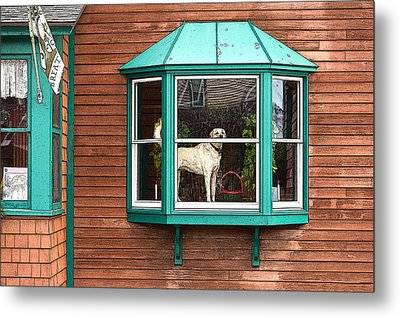 Dog In Window Metal Print