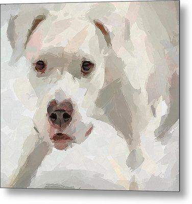Dog Question Metal Print