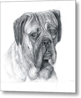 Boxer Dog Metal Print by Rose Wang
