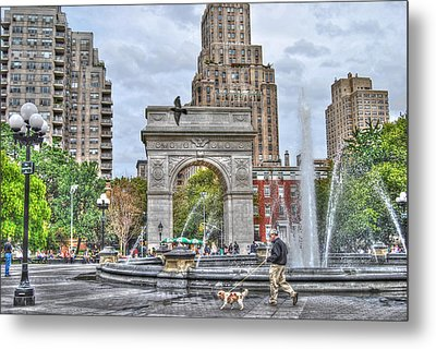 Dog Walking At Washington Square Park Metal Print by Randy Aveille