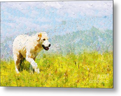Dog Walking By Grass Painting Metal Print by Magomed Magomedagaev