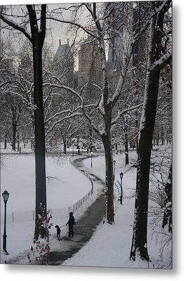Dog Walking In A Snowy Central Park Metal Print