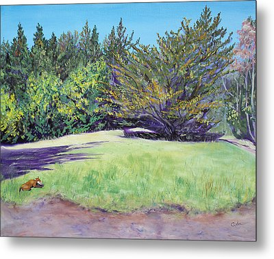 Dog With Bone In Spring Meadow Metal Print