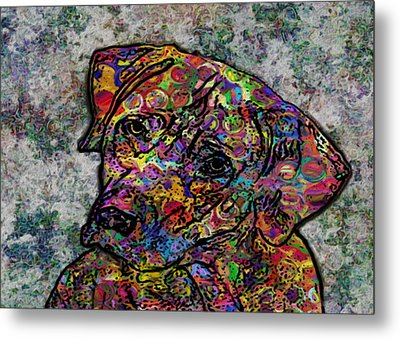 Dog With Color Metal Print by Jack Zulli