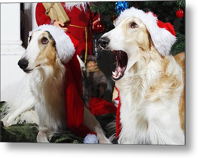 dogs Borzoi puppies and Christmas greetings Metal Print by Christian Lagereek