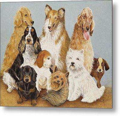 Dogs Dinner  Metal Print