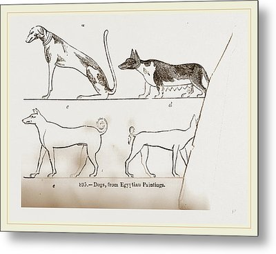 Dogs, From Egyptian Paintings Metal Print by Litz Collection