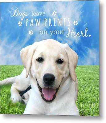 Dogs Leave Paw Prints On Your Heart Metal Print by Li Or
