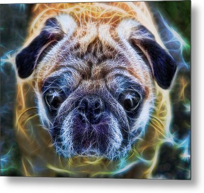 Dogs - The Psychedelic Fantasy Pug Metal Print