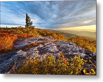 Dolly Sods Wilderness Metal Print by Bernard Chen