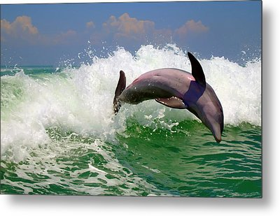 Dolphin Flip Metal Print by Kara  Stewart